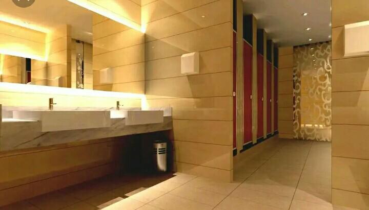 Penataan Toilet Umum yang Ideal