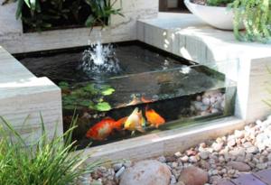 yu intip berbagai desain kolam kaca minimalis yang akan